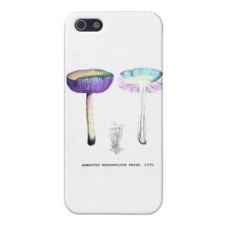 Vintage Botanical Mushrooms Cases For iPhone 5