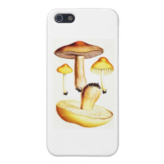 Vintage Botanical Mushrooms iPhone SE/5/5s Case