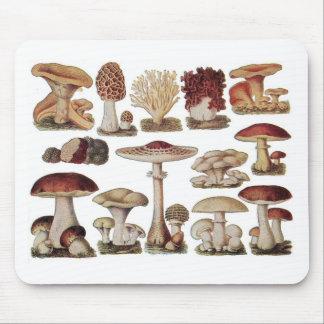 Vintage Botanical Mushrooms Mouse Pad