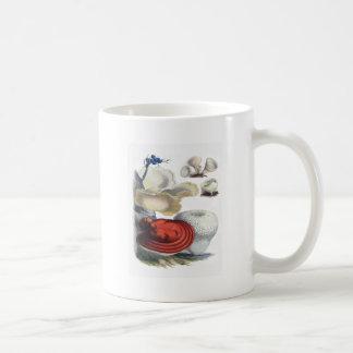 Vintage Botanical Mushrooms Classic White Coffee Mug