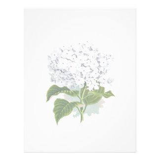 Vintage Botanical Page - White Hydrangea Letterhead