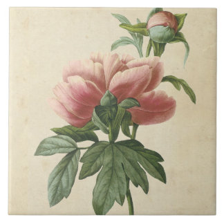 Vintage Botanical Peony Tiles