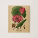 Vintage Botanical Print Pink Water Lily Lotus Puzzle