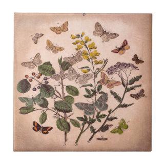 Vintage Botanical Prints Wildflowers Butterflies Ceramic Tile