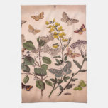 Vintage Botanical Prints Wildflowers Butterflies Kitchen Towels