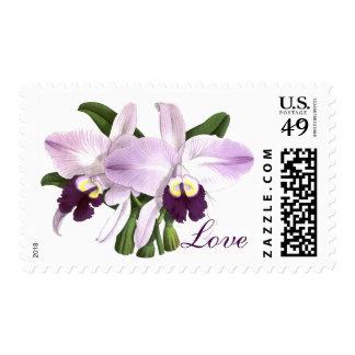 Vintage Botanical Purple Orchid Flowers Art Stamp