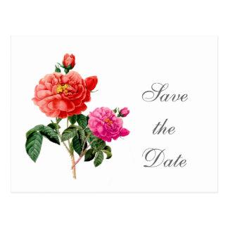 vintage botanical rose flowers save the date postcard