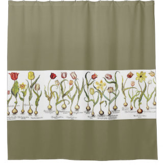 vintage botanical tulip flowers floral garden shower curtain