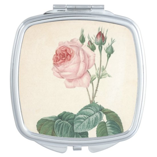 Vintage Botanical Watercolor with Rose - Mirror