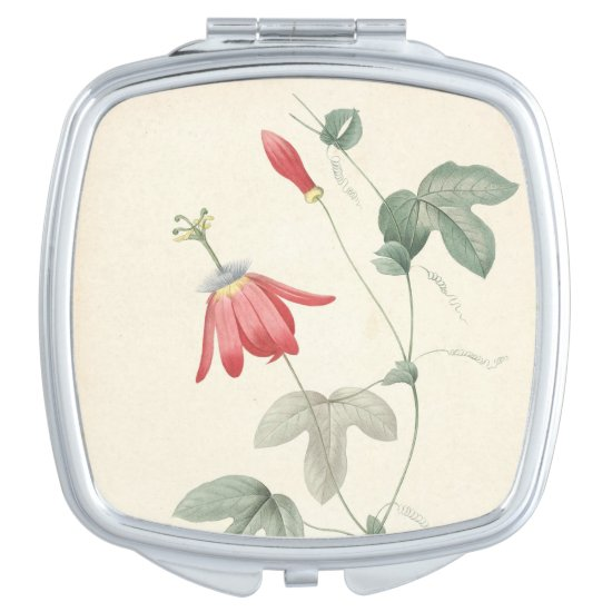 Vintage Botanical Watercolors Passiflora Mirror