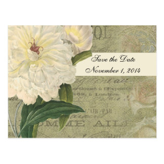 Vintage Botanical White Peony Save the Date Postcard