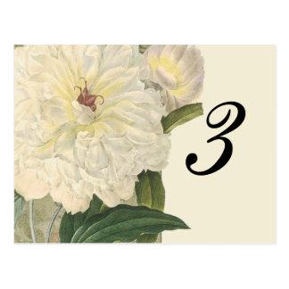 Vintage Botanical White Peony Table Number Card Postcard