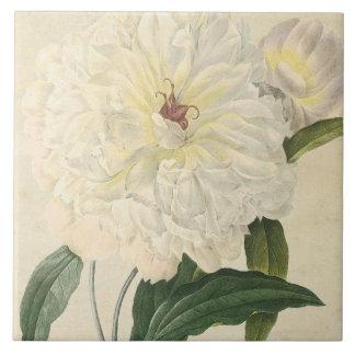 Vintage Botanical White Peony Ceramic Tiles