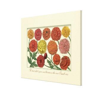Vintage Botanical with Scripture Verse Gallery Wrap Canvas