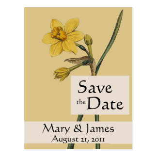 Vintage Botanicals Daffodil Save the Date Postcard
