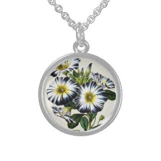 Vintage Botanicals Dwarf Morning Glory Round Pendant Necklace