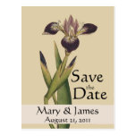 Vintage Botanicals Iris Save the Date Postcard