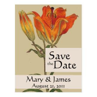 Vintage Botanicals Lily Save the Date Postcard
