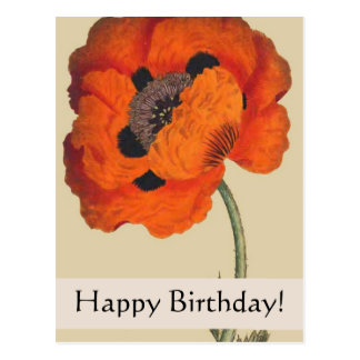 Vintage Botanicals Poppy Birthday Card