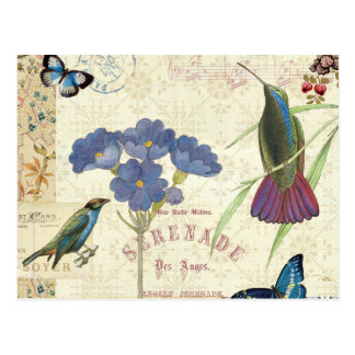 Vintage Bouquet of Flowers, Birds and Butterflies Postcard