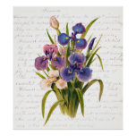 Vintage Bouquet of Lilacs - Text by Clara Balfour Posters