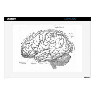"Vintage Brain Anatomy 15"" Laptop Skins"
