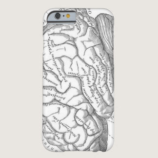 Vintage Brain Anatomy Barely There iPhone 6 Case