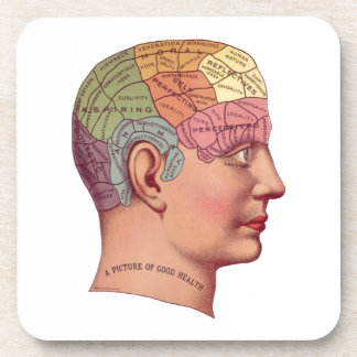 Vintage Brain Function Illustration Beverage Coaster