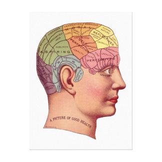 Vintage Brain Function Illustration Canvas Print