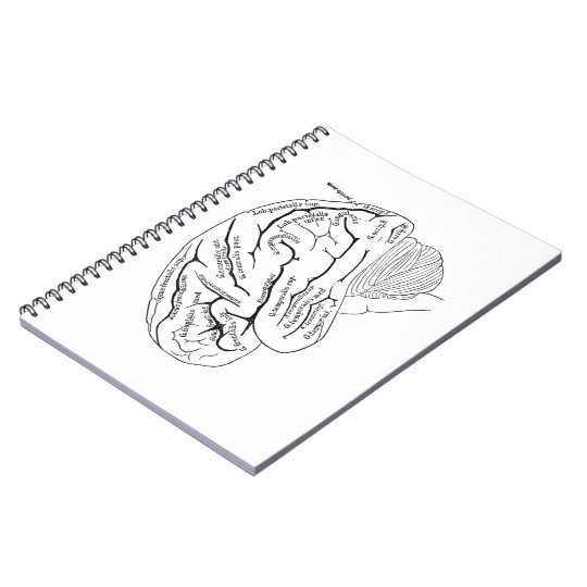 Vintage Brain Notebook