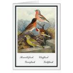 Vintage British Garden Birds Illustration Greeting Card