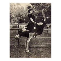 Vintage Broadway Actress Riding an Ostrich Postcard