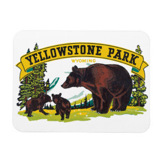 Vintage Brown Bears in Yellowstone National Park Magnet