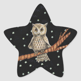 Vintage Brown Owl Necklace Crescent Moon Stars Star Stickers