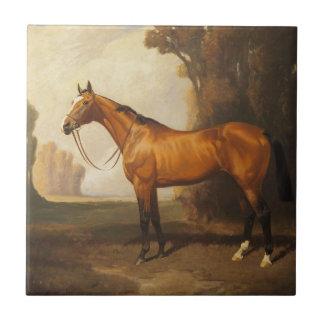 Vintage Brown Thoroughbred Horse Ceramic Tile