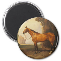 Vintage Brown Thoroughbred Horse Magnet