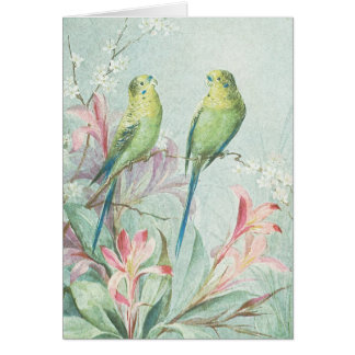 Vintage Budgerigars Bird Branch Flowers Thank You Stationery Note Card