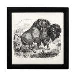 Vintage Buffalo Retro Bison Animal Illustration Trinket Box