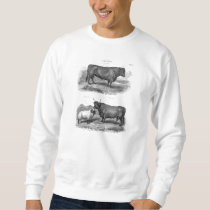Vintage Bull Sheep Illustration Retro Cow Bulls Sweatshirt