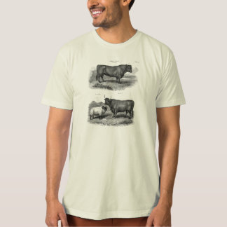 Vintage Bull Sheep Illustration Retro Cow Bulls T-Shirt