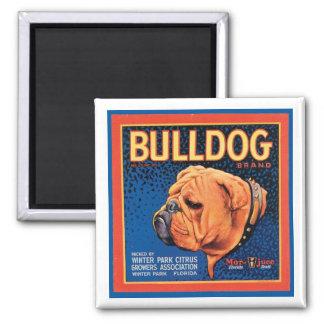 Vintage Bulldog Brand Crate Label Magnet
