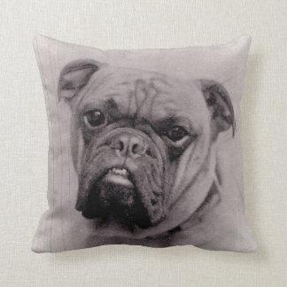 Vintage Bulldog Face Photograph Throw Pillow