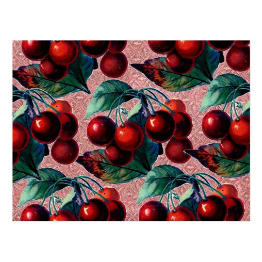 Vintage Bunch of Red Cherries Antique Fruit Design Postcard