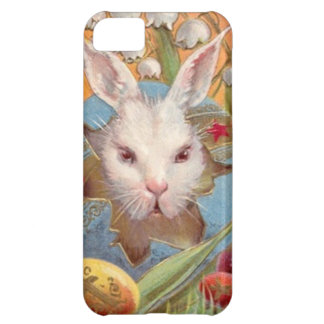 Vintage Bunny In Easter Egg Easter Card Cover For iPhone 5C