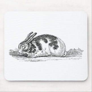 Vintage Bunny Rabbit Illustration -1800 s Rabbits Mouse Pads