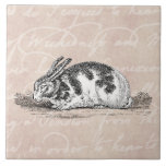 """Vintage Bunny Rabbit Illustration -&#160;1800&#39;s Rabbits Ceramic Tile<br><div class=""""desc"""">Custom Template For Large Ceramic Tiles - Customized Tile Templates. Personalize with your own name, pattern, design, quote, monogram, or photograph. Use our cool templates, artwork, photos, graphics, and illustrations, then add names, text, quotes, and monograms to create your own ceramic tile. Click the &quot;Customize it!&quot; button to make it...</div>"""