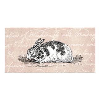 Vintage Bunny Rabbit Illustration -1800's Rabbits Personalized Photo Card