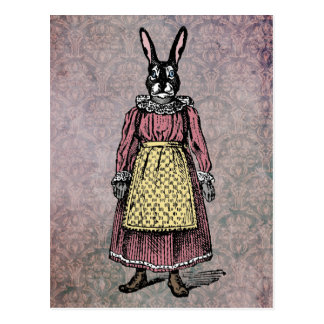 Vintage Bunny Rabbit in Dress w/Apron Illustration Postcard
