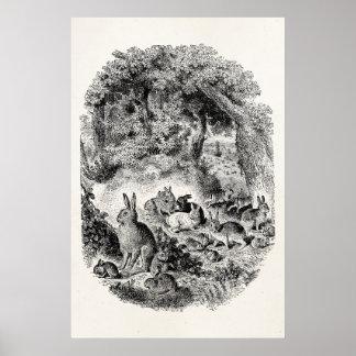 Vintage Bunny Rabbits 1800s Bunnies Rabbit Poster
