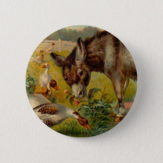 Vintage Burro With Geese Pinback Button